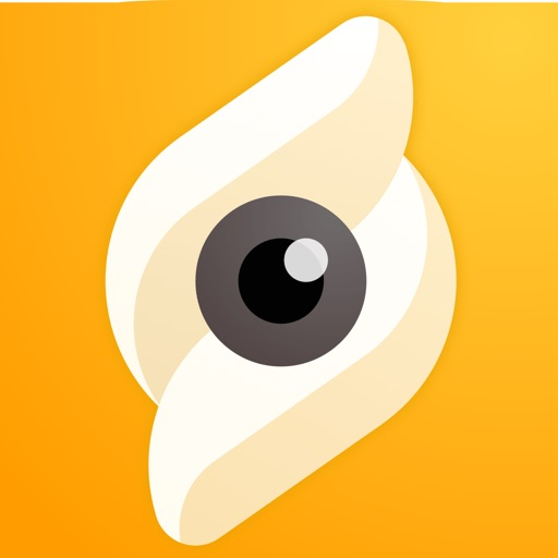 Snapics Photo Editor - Fun Art free software for iPhone and iPad