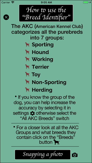Dog Breed Identifier screenshot 7