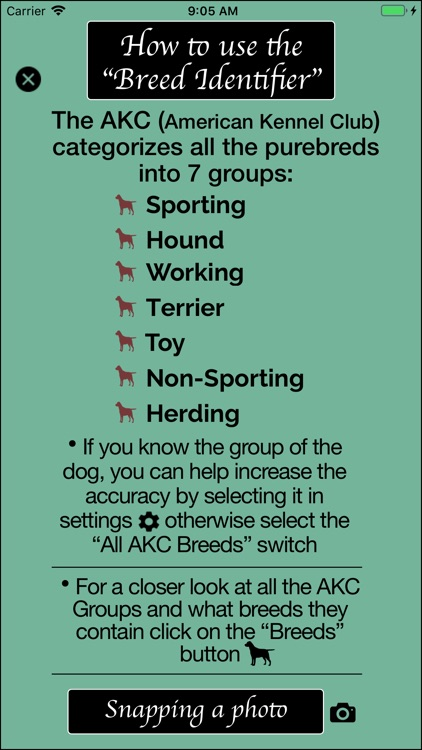 Dog Breed Identifier screenshot-6
