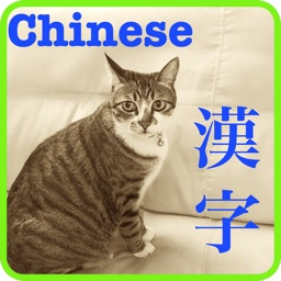 Chinese Ping Ying 中国漢字発音