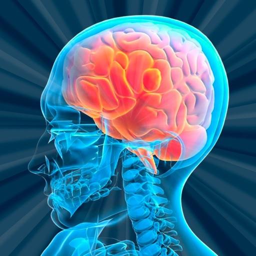 Тест на Возраст Мозга
