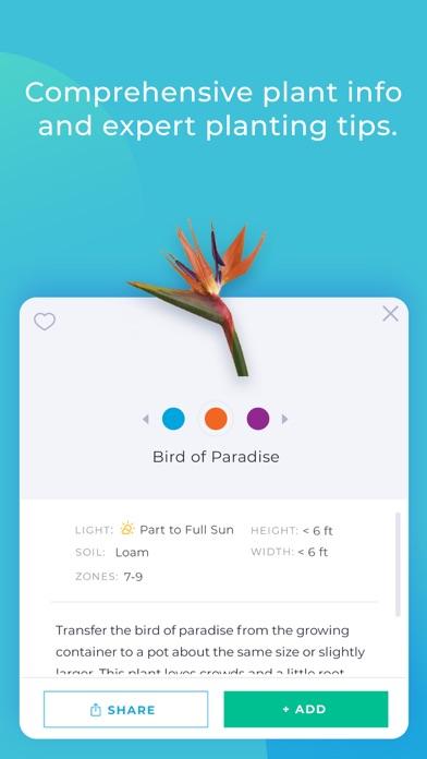 iScape Screenshot