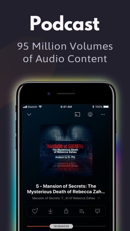 The Podcast Player