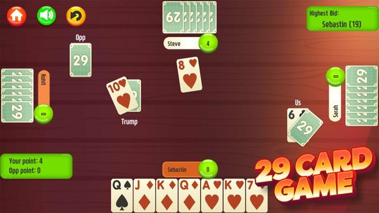 29 Card Game * PLUS