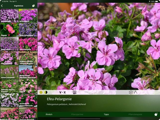Der Pflanzen Profi On The App Store