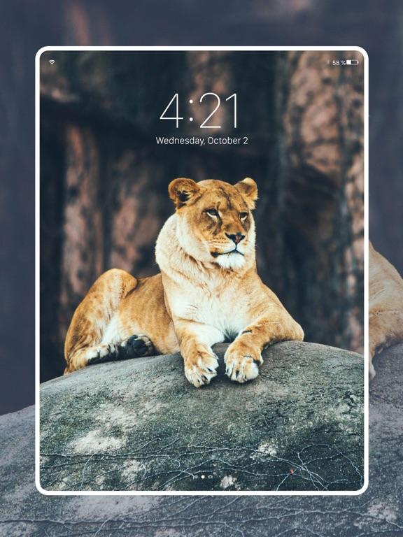 Fancy Wallpapers & Backgrounds-ipad-4