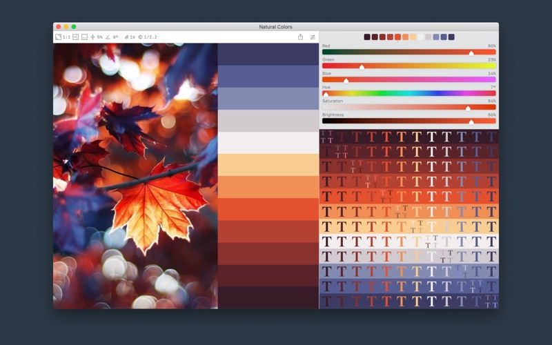 Color Palette from Image Screenshot 1 xj6ssn
