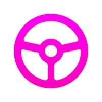 Lyft Driver