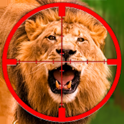 Jungle Lion Hunting Operation