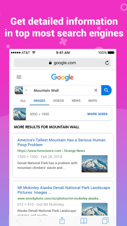 Image Search •