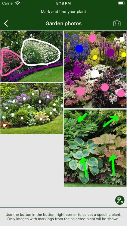 Hortus - Plants in your garden