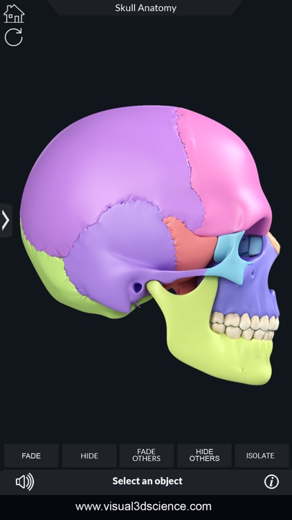 My Skull Anatomy screenshot-6