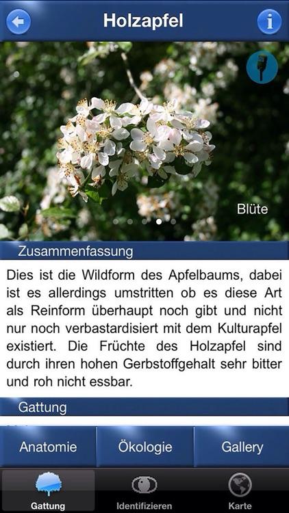 Baum Id Germany screenshot-3