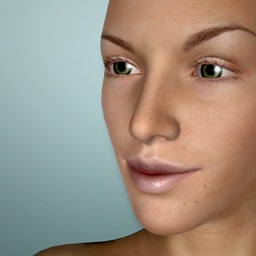 Face Model -posable human head