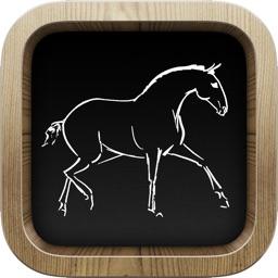 Ez Horse