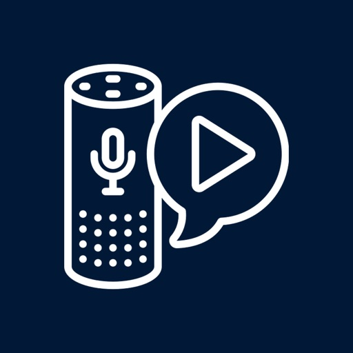 Voice Assistant for AA devices