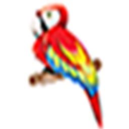 BirdSt