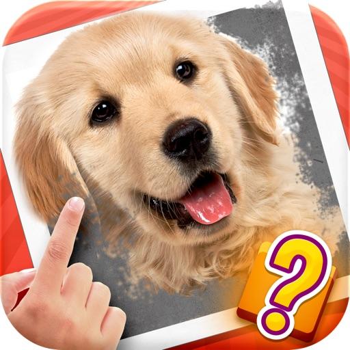 Scratch Quiz - Can You Find The Secret Image?