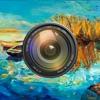 绘画艺术相机