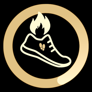 Step Burn Pedometer - Lifestyle app