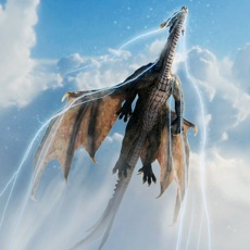 Activities of Fire Flying Dragon Simulator