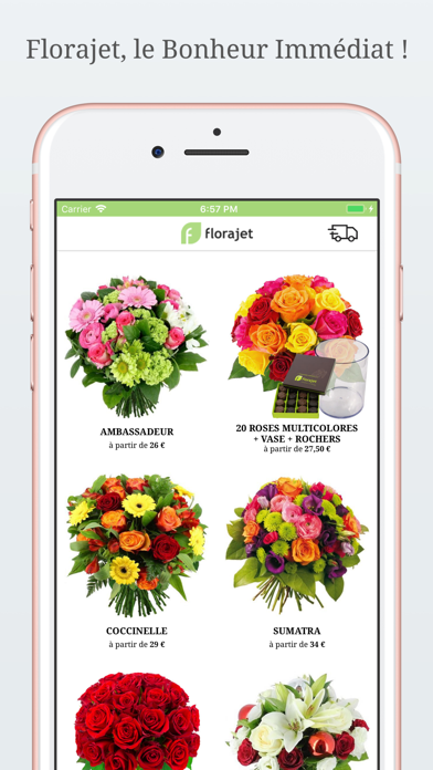 Florajet screenshot one