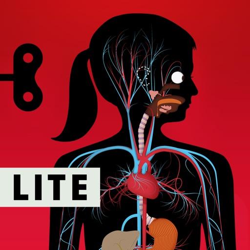 Человеческое тело от LITE