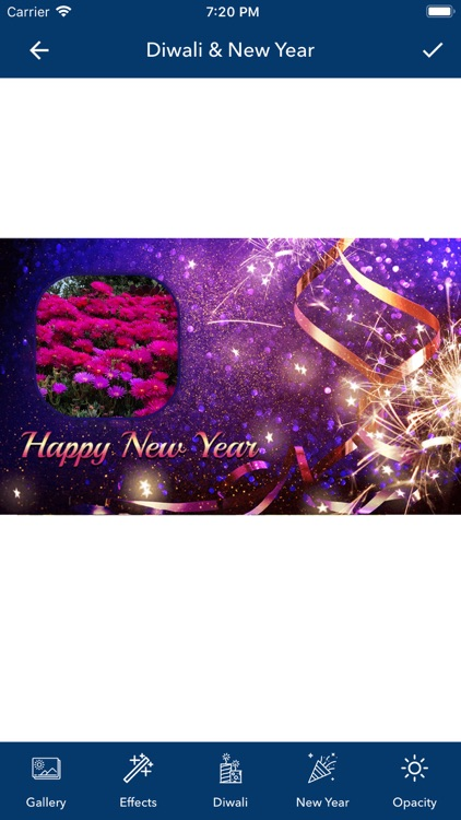 Diwali & New Year PIP Photo screenshot-3