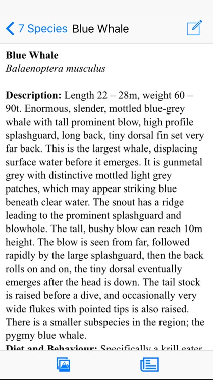 Antarctic Wildlife Guide screenshot-4