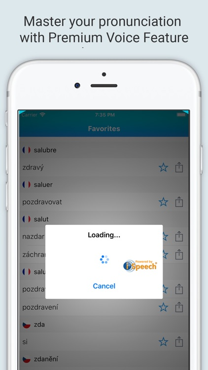 French Czech Dictionary + screenshot-3