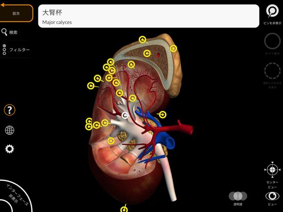解剖学 - 3Dアトラスのおすすめ画像4