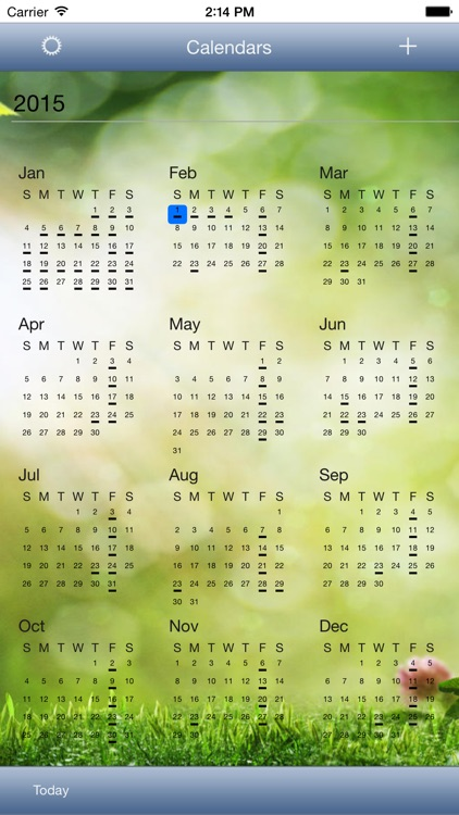 CalendarSkin screenshot-4
