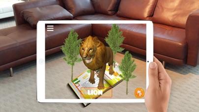 MagicBook 4D