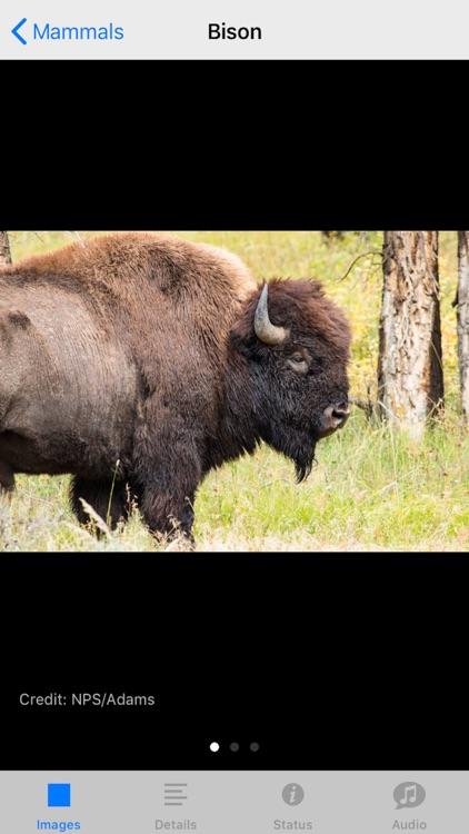 Yellowstone NP Field Guide screenshot-3