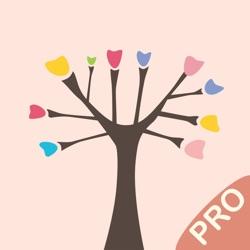 画画树专业版 - 大师级美术绘画板