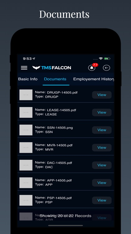 Tmsfalcon screenshot-1