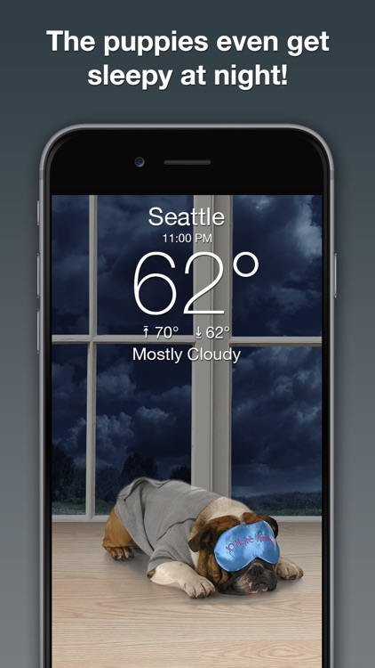 Weather Puppy Forecast + Radar screenshot-3