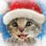 Little Kitten -My Favorite Cat