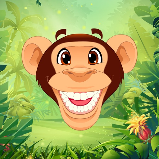 Monkey Segment