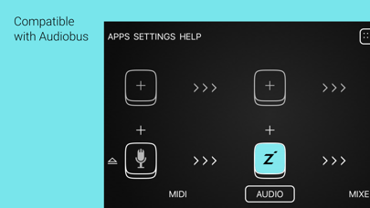 Inter-App (IAA) Reverb, Delay, Echo Apps for iOS (43)