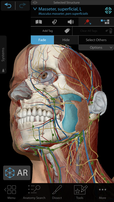 Human Anatomy Atlas 2020 Screenshot
