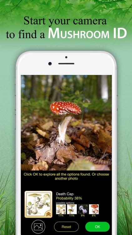 Mushroom Book & Identification screenshot-0