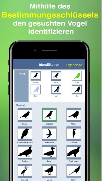 Bird Id - Garden Birds Germany screenshot-3
