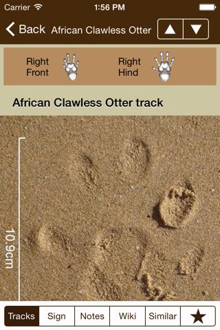 iTrack Africa - náhled