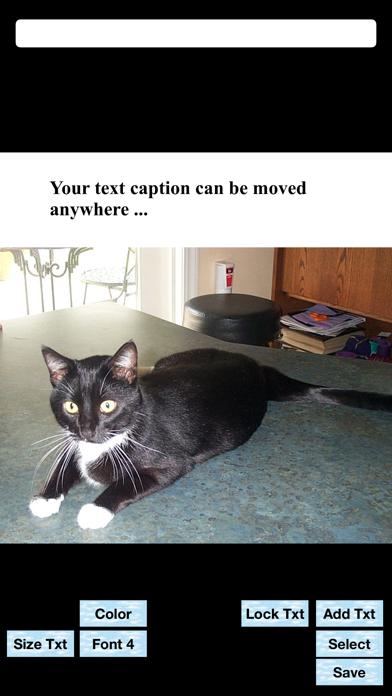 Text Above Photo Screenshots