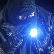 小偷模拟器抢劫游戏