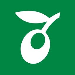Orienta Uppsala