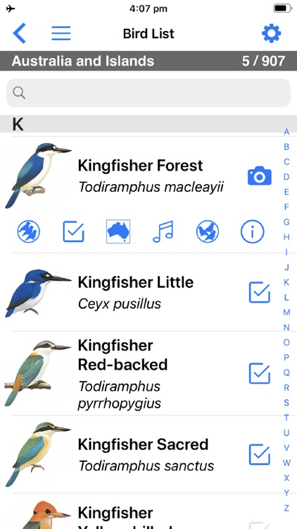 Pizzey and Knight Birds of Aus