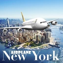 New York Flight Simulator