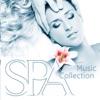 点击获取SPA Music Collection